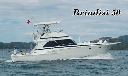 Brindisi Fishing boat