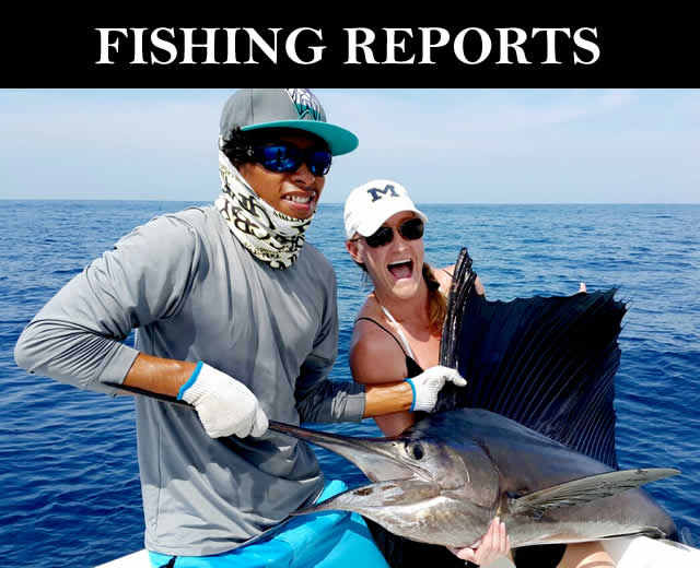 Guanacaste fishing papagayo costa rica fishing for Fishing guanacaste costa rica