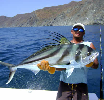 Playa Hermosa Fishing for rooster