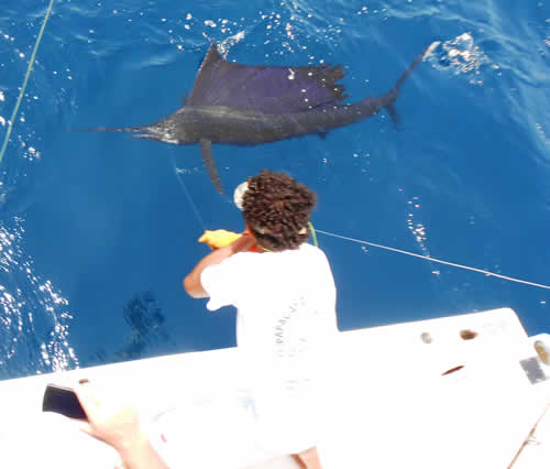 Riu Guancaste offshore fishing